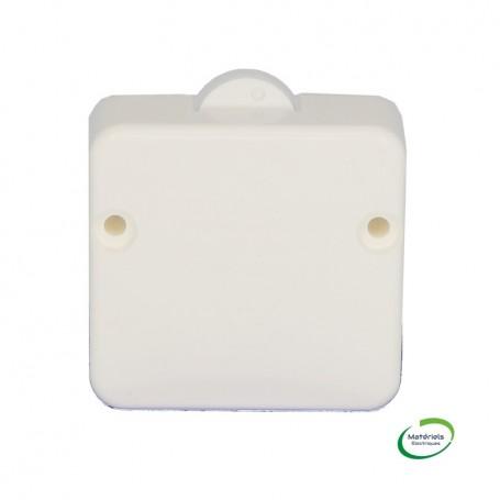 LEGRAND 040175 - Interrupteur-contacteur de porte, 2A, 250V