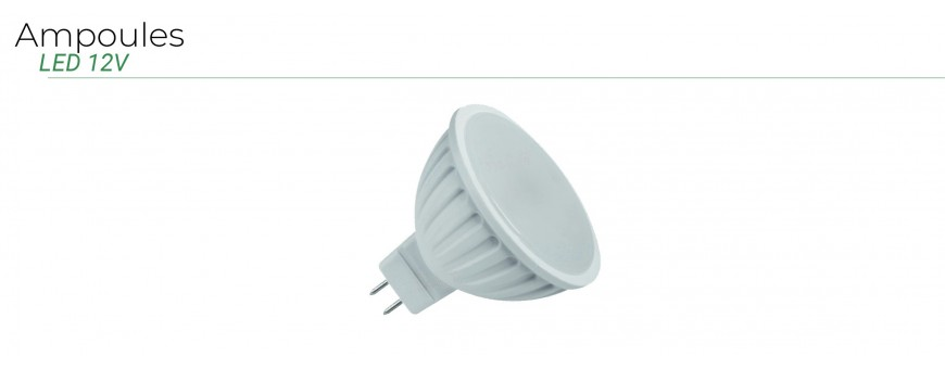 Ampoules LED 12V MR16